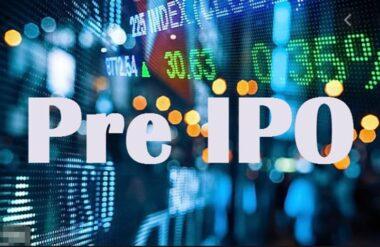 Предварительное IPO размещение